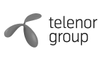 Case №1 Telenor Ukraine office. IT Support of the complete cycle: development, update, user support, consulting